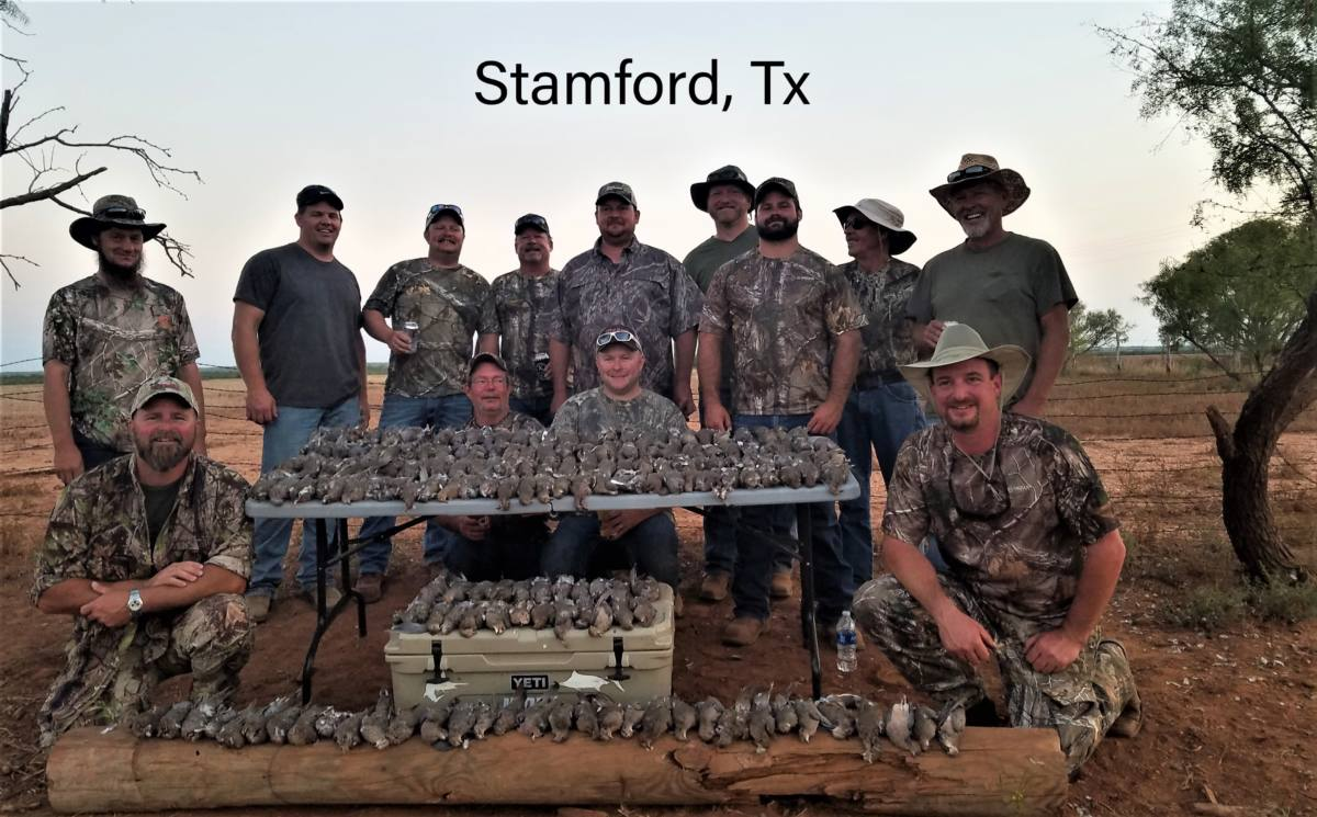 North Texas Dove Hunting